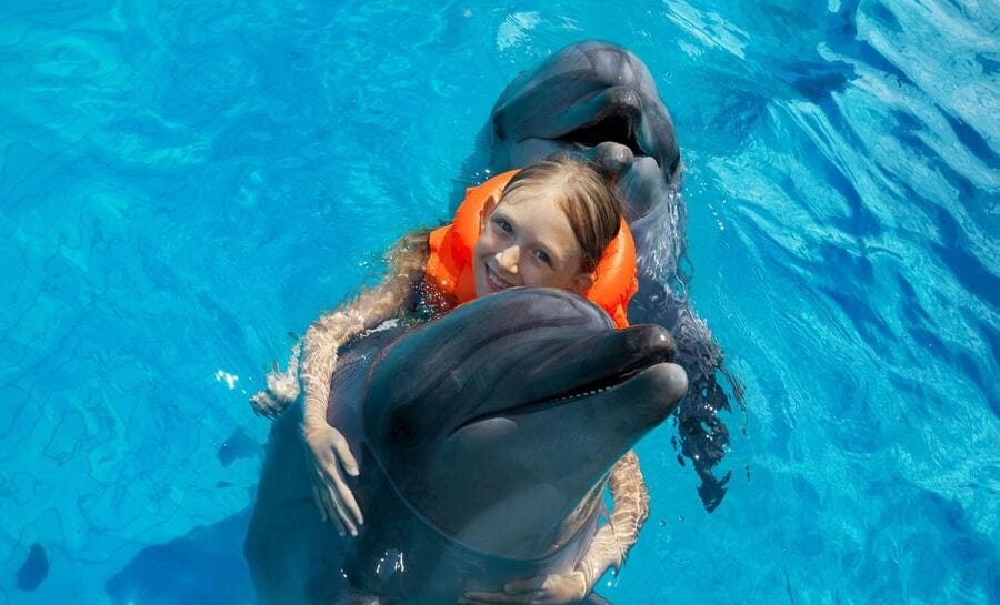 Dolphin Royal Swim - Photo by Shore Excursions
