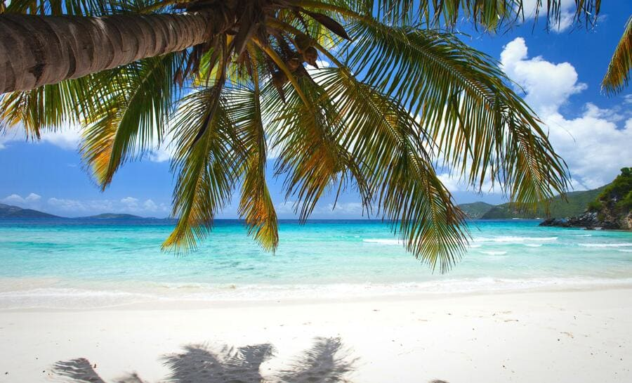 Tortola Beach Day - Photo by Shore Excursions